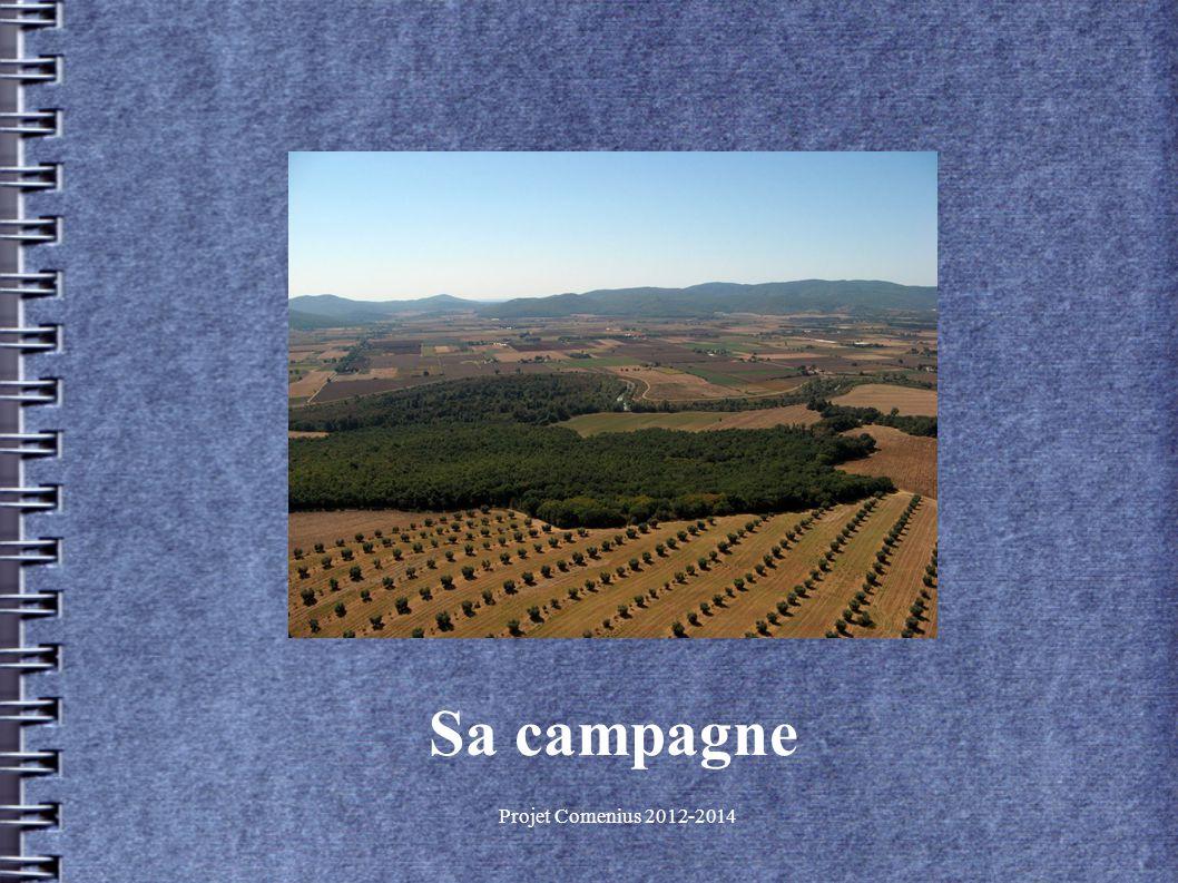 Projet Comenius 2012-2014 Sa campagne