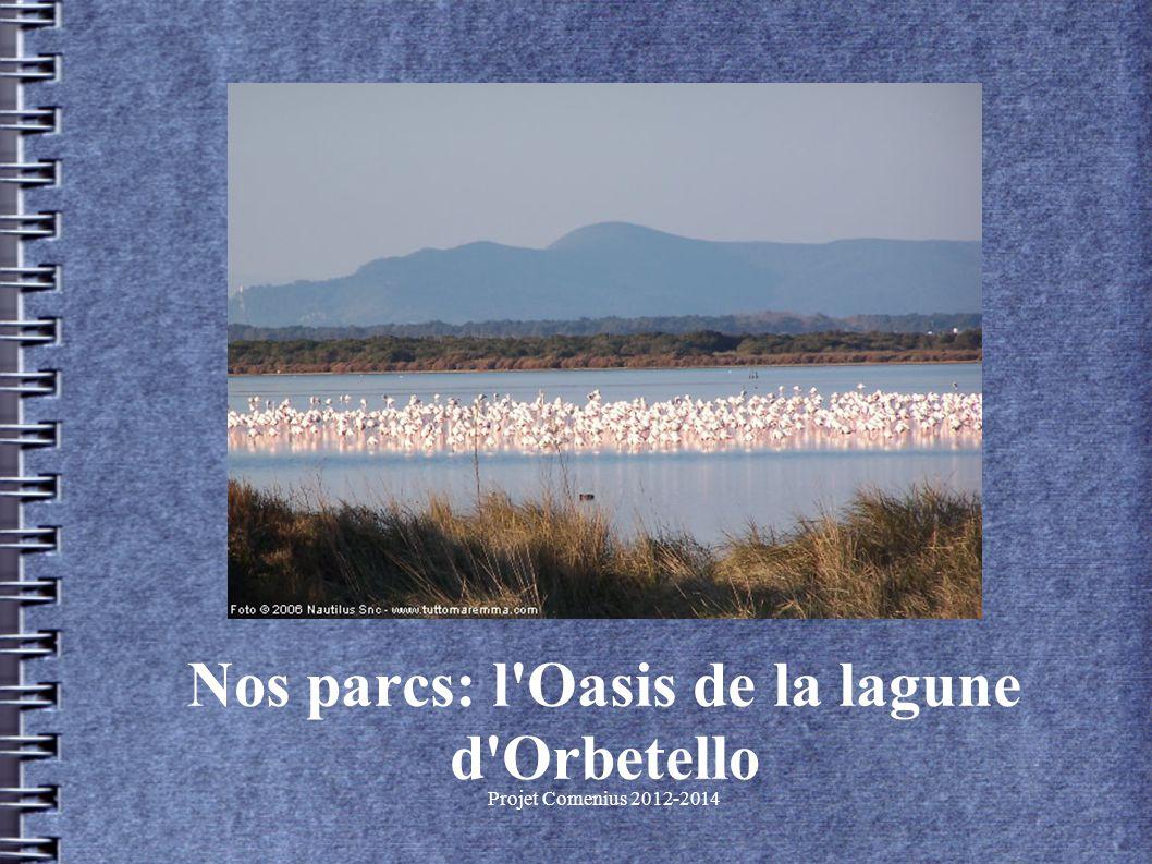 Projet Comenius 2012-2014 Nos parcs: l Oasis de la lagune d Orbetello