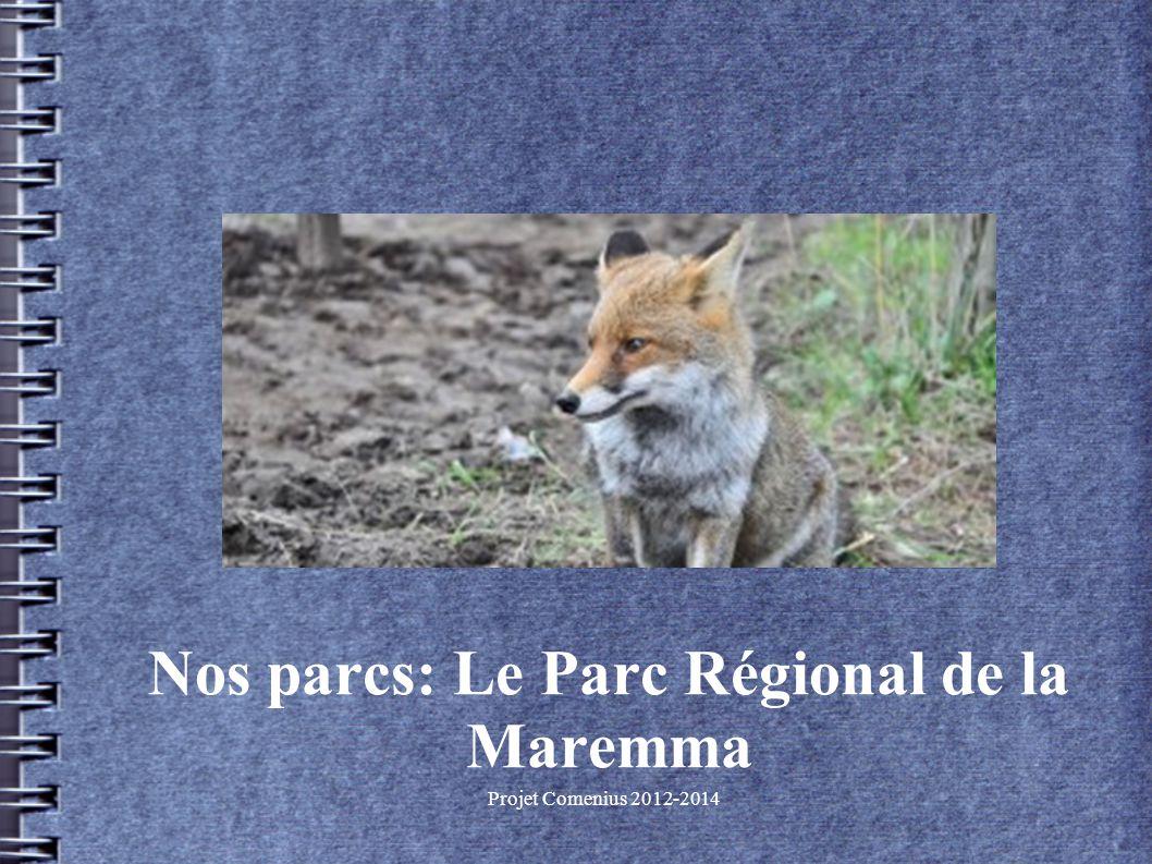 Projet Comenius 2012-2014 Nos parcs: Le Parc Régional de la Maremma