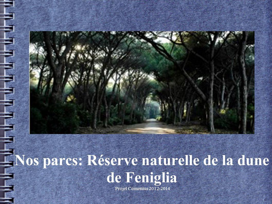 Projet Comenius 2012-2014 Nos parcs: Réserve naturelle de la dune de Feniglia