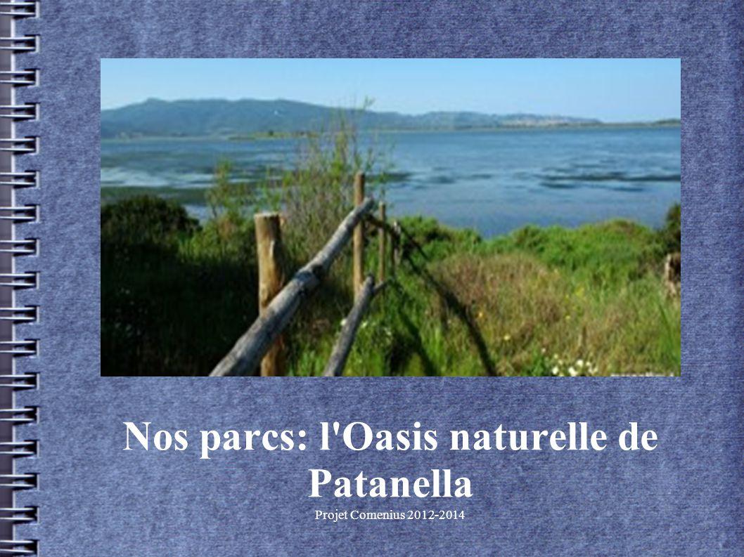 Projet Comenius 2012-2014 Nos parcs: l Oasis naturelle de Patanella