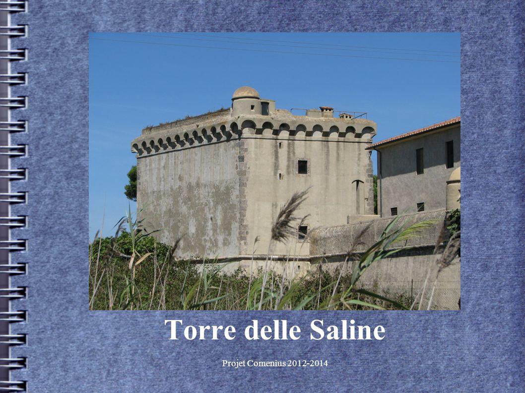 Projet Comenius 2012-2014 Torre delle Saline