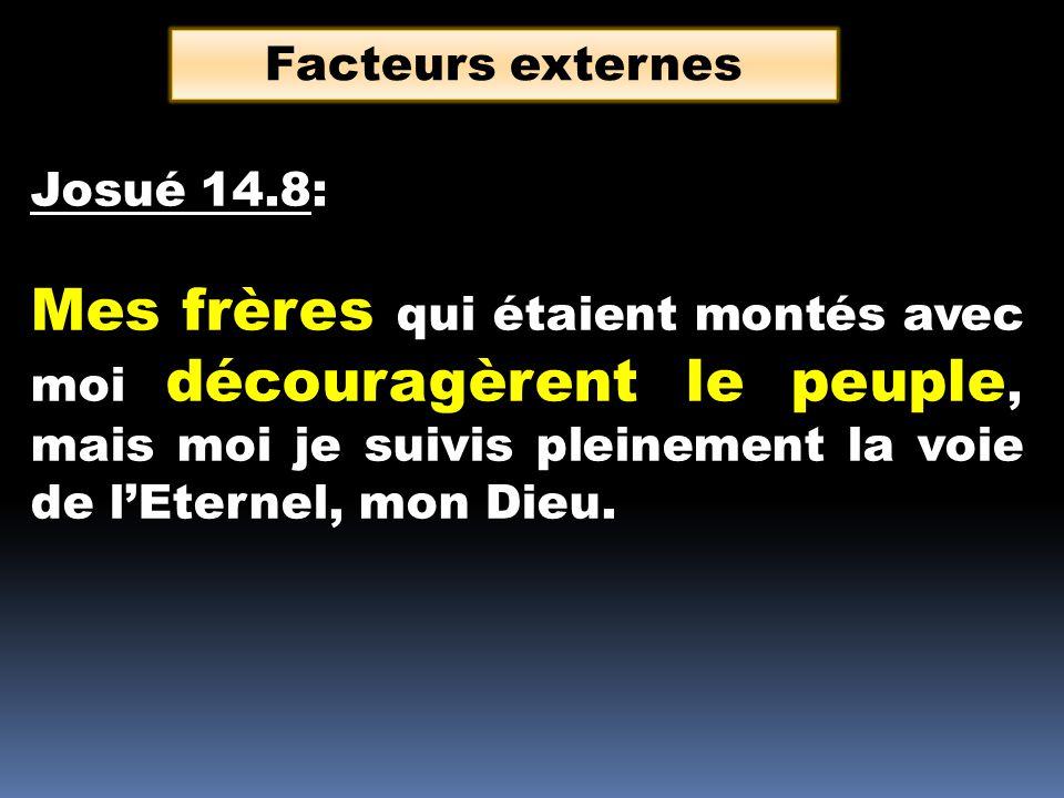 Josué 14.8: Mes frères qui étaient montés avec moi découragèrent le peuple, mais moi je suivis pleinement la voie de lEternel, mon Dieu. Facteurs exte