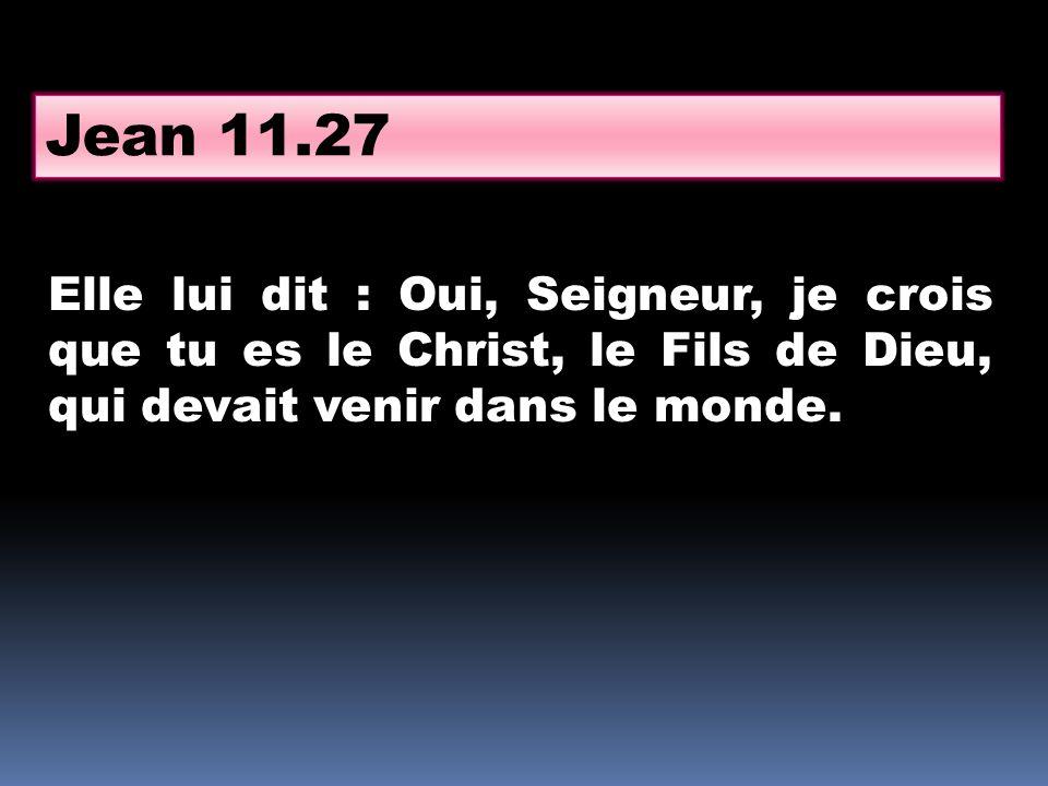 Elle lui dit : Oui, Seigneur, je crois que tu es le Christ, le Fils de Dieu, qui devait venir dans le monde. Jean 11.27
