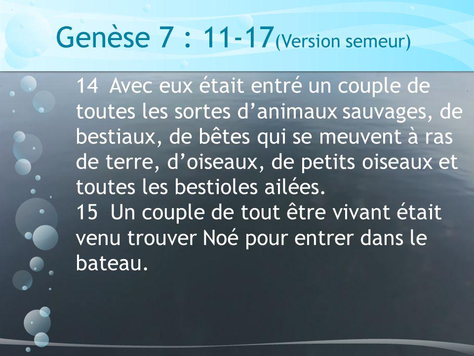 Genèse 7 : 11-17 (Version semeur) 14 Avec eux était entré un couple de toutes les sortes danimaux sauvages, de bestiaux, de bêtes qui se meuvent à ras de terre, doiseaux, de petits oiseaux et toutes les bestioles ailées.