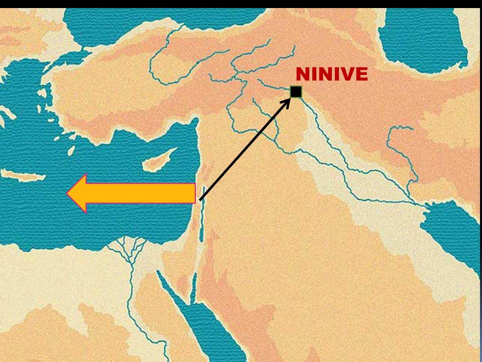 Il descendit à Japho, et il trouva un navire qui allait à Tarsis ; il paya le prix du transport, et sembarqua pour aller avec les passagers à Tarsis, loin de la face de lEternel.