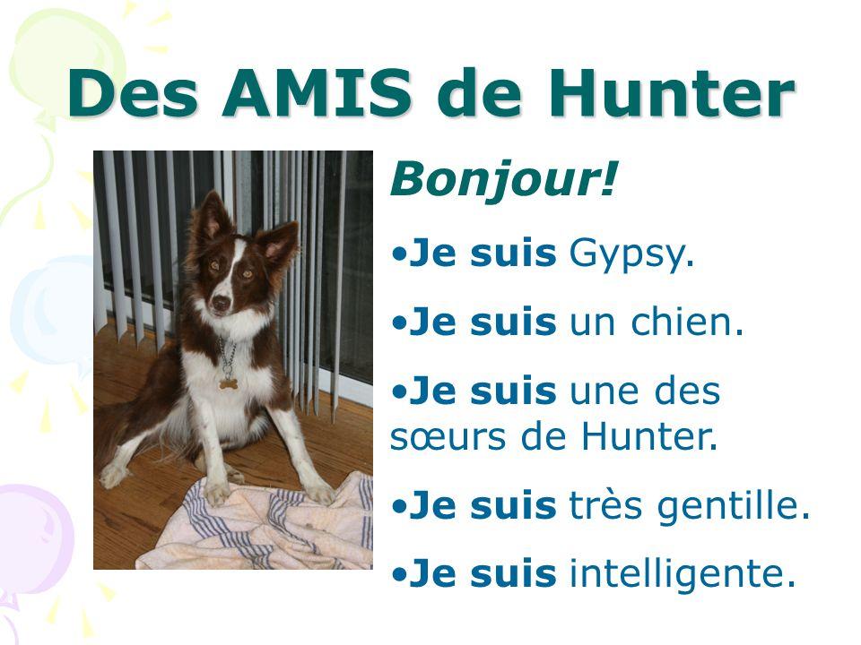 Des AMIS de Hunter Bonjour! Je suis Gypsy. Je suis un chien. Je suis une des sœurs de Hunter. Je suis très gentille. Je suis intelligente.