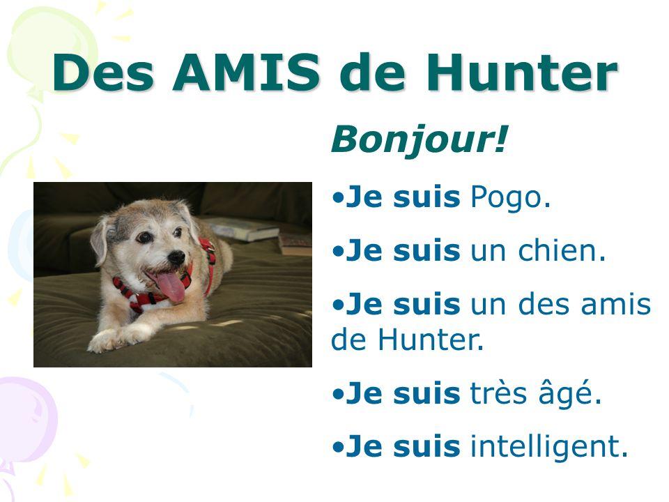 Des AMIS de Hunter Bonjour! Je suis Pogo. Je suis un chien. Je suis un des amis de Hunter. Je suis très âgé. Je suis intelligent.