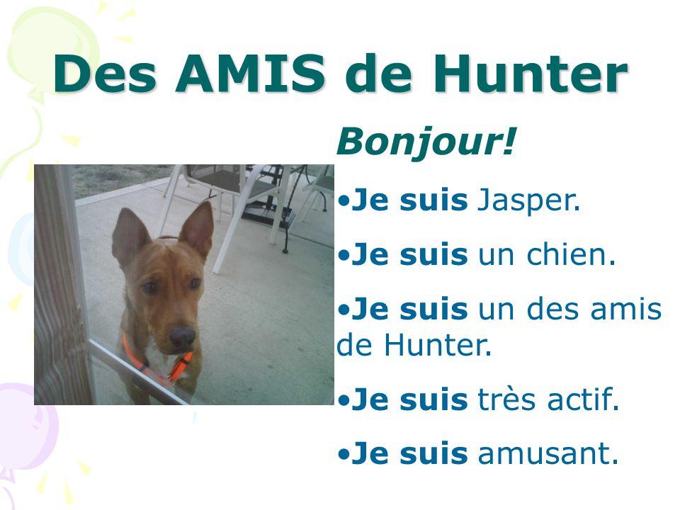 Des AMIS de Hunter Bonjour! Je suis Jasper. Je suis un chien. Je suis un des amis de Hunter. Je suis très actif. Je suis amusant.