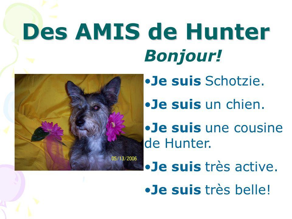 Des AMIS de Hunter Bonjour! Je suis Schotzie. Je suis un chien. Je suis une cousine de Hunter. Je suis très active. Je suis très belle!