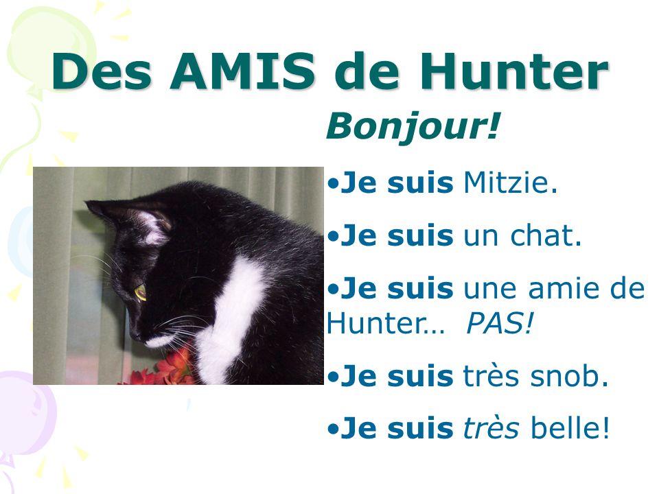 Des AMIS de Hunter Bonjour! Je suis Mitzie. Je suis un chat. Je suis une amie de Hunter… PAS! Je suis très snob. Je suis très belle!