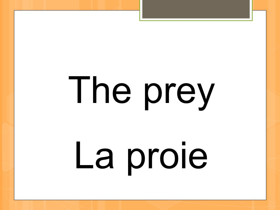 The prey La proie