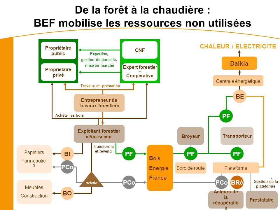 5 CHALEUR / ELECTRICITE Dalkia BE Achète les bois Exploitant forestier et/ou scieur Expertise, gestion de parcelle, mise en marché Propriétaire privé