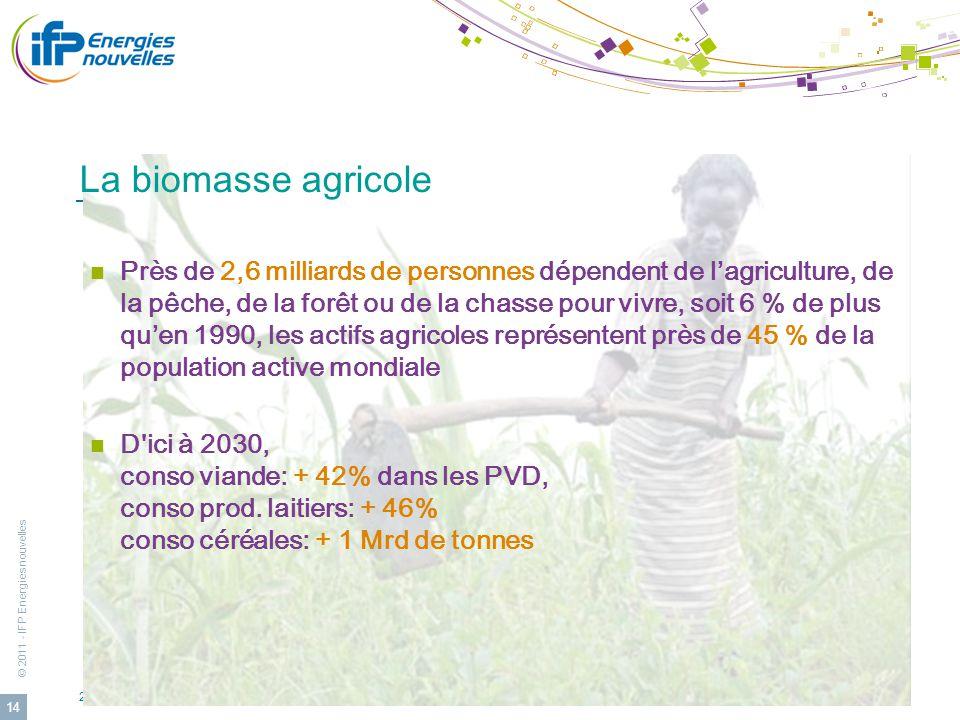 © 2011 - IFP Energies nouvelles 24eme Cleantuesday Rhône-Alpes: Lyon le 24 avril 2012 14 La biomasse agricole Près de 2,6 milliards de personnes dépen