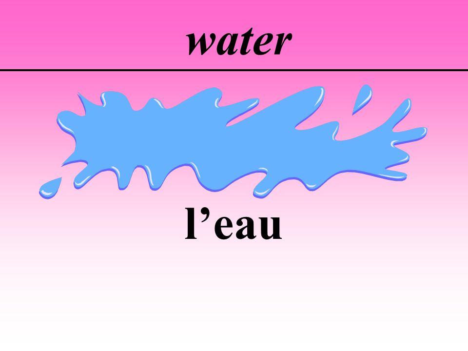 water leau