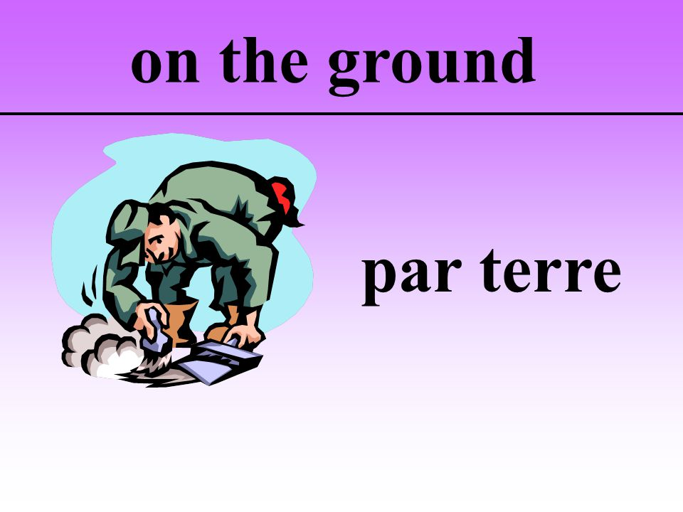 on the ground par terre