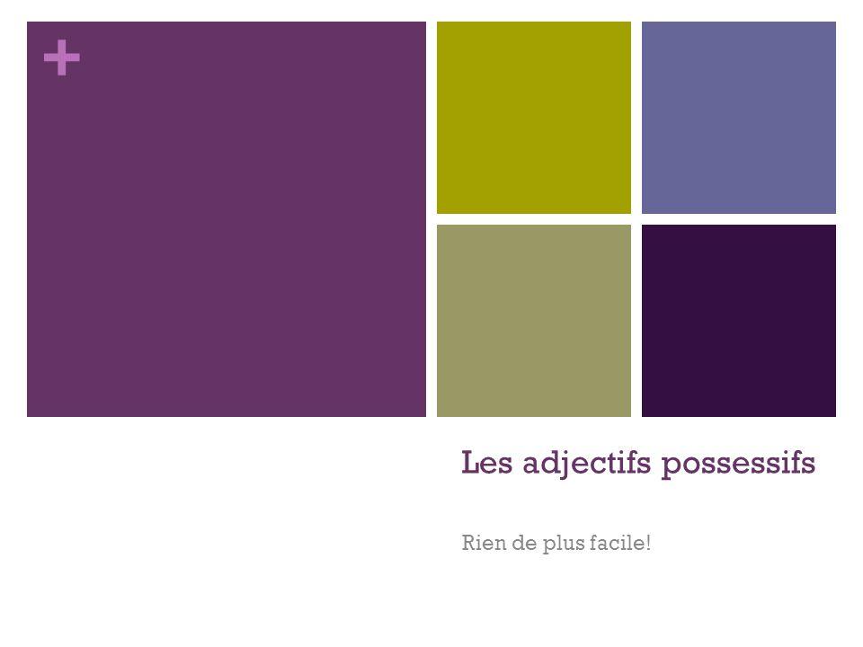 + Quest-ce quon utilise en français pour indiquer la possession.