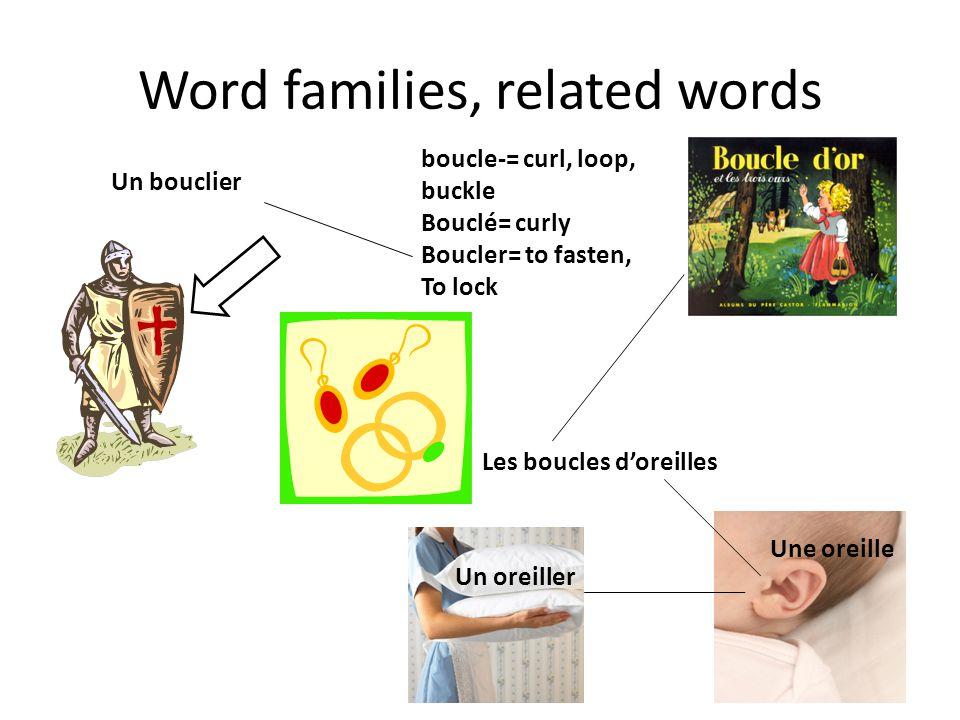 Word families, related words Les boucles doreilles Un oreiller Une oreille boucle-= curl, loop, buckle Bouclé= curly Boucler= to fasten, To lock Un bouclier
