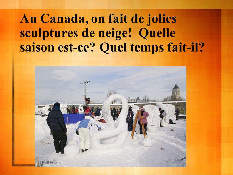 Au Canada, on fait de jolies sculptures de neige! Quelle saison est-ce? Quel temps fait-il?