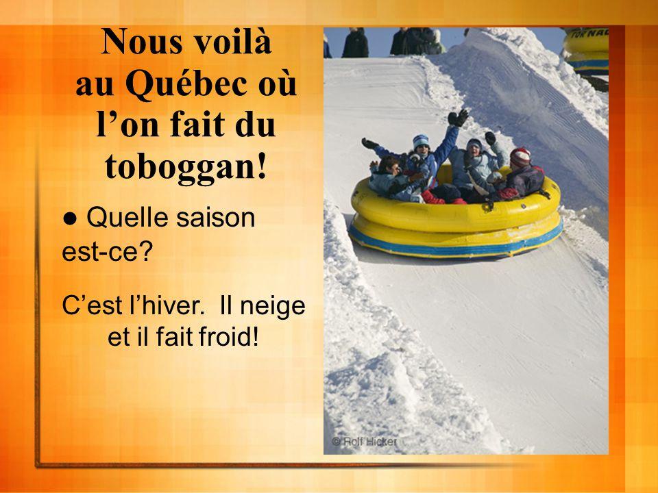 Nous voilà au Québec où lon fait du toboggan! Quelle saison est-ce? Cest lhiver. Il neige et il fait froid!