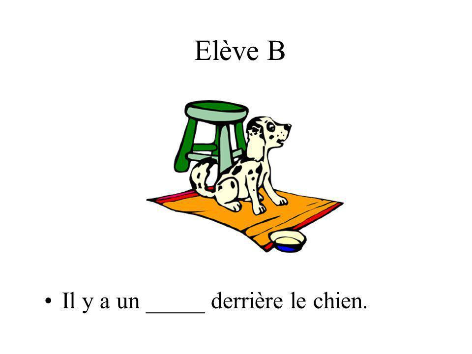 Elève B Il y a un _____ derrière le chien.