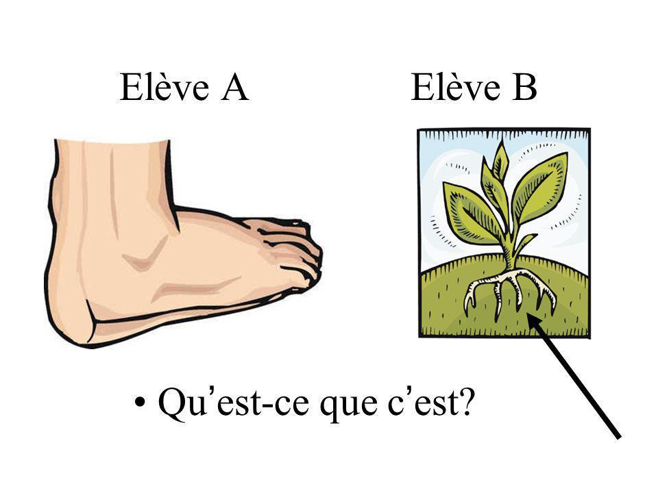 Elève B Le garçon mérite des ____