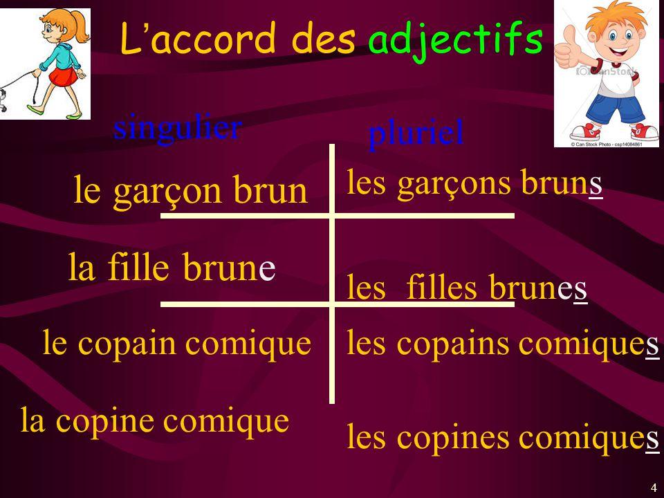 15 3.les adjectifs irréguliers m. sg. beau m. sg.