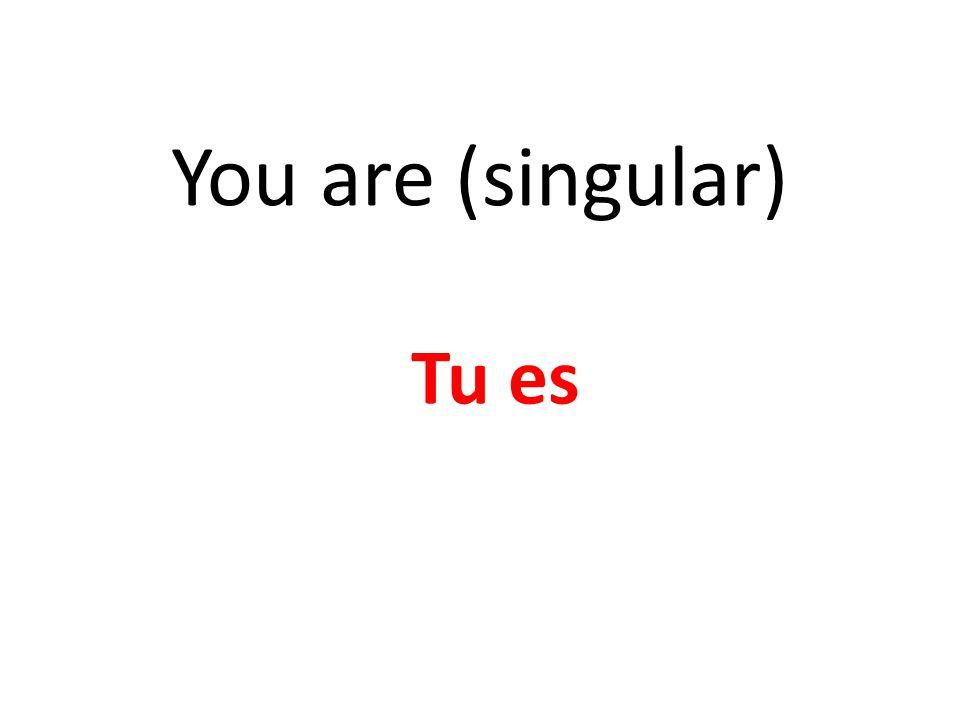 You are (singular) Tu es