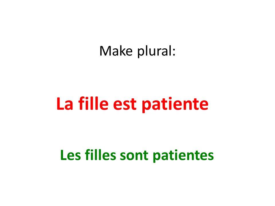 Make plural: La fille est patiente Les filles sont patientes