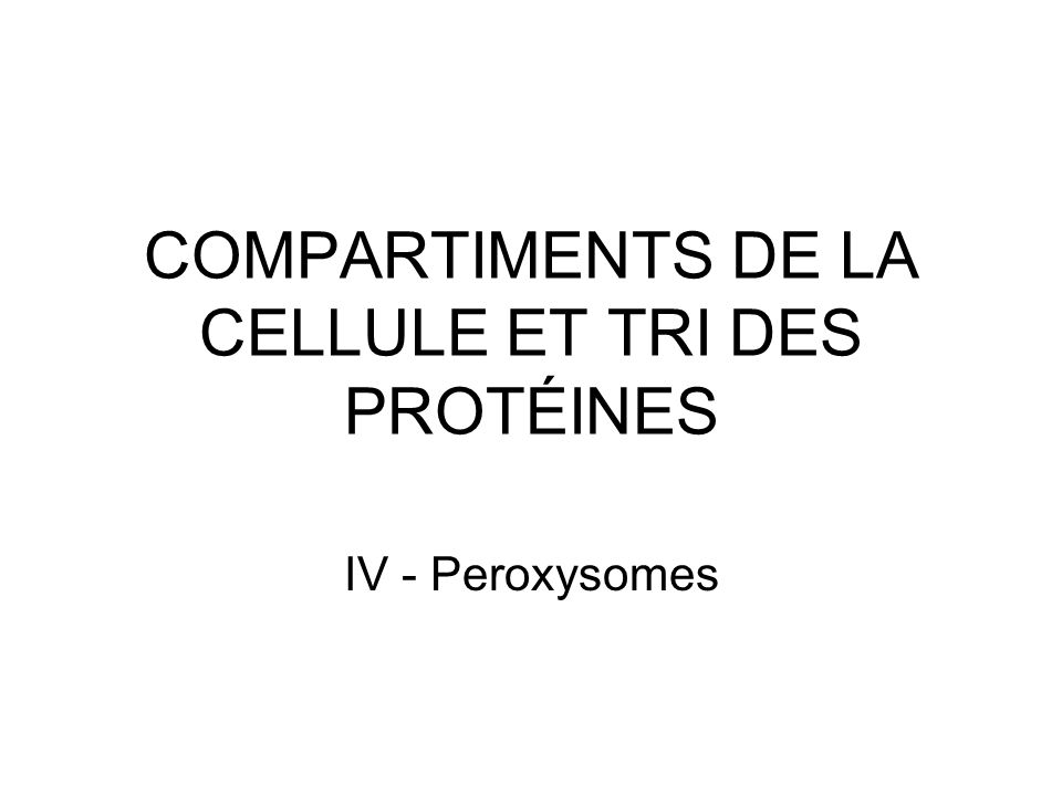 23 Peroxines 1.Récepteurs protéiques solubles cytosoliques 2.Protéines ancrées dans la membrane du peroxysome du côté cytosolique Au moins 23 types de protéines connus