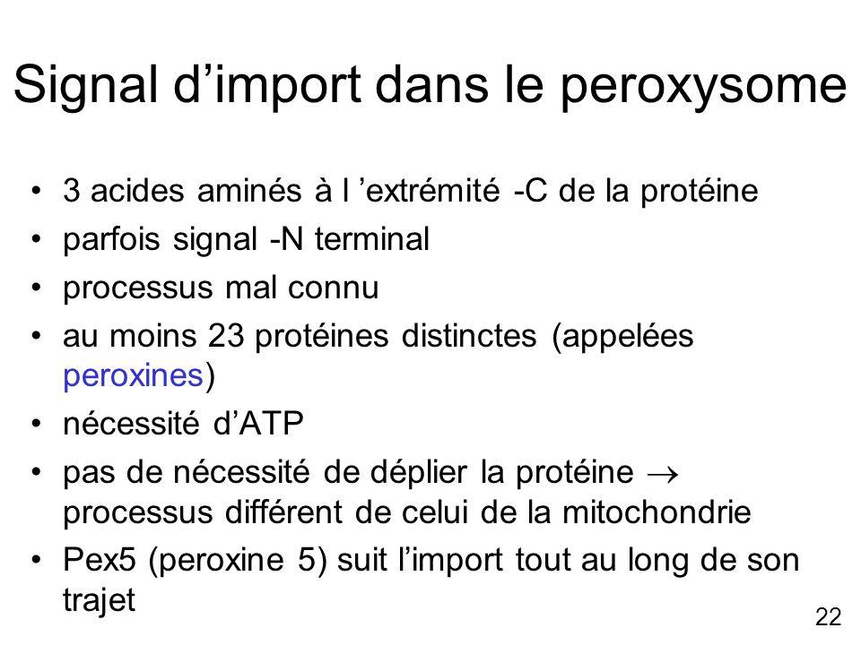 22 Signal dimport dans le peroxysome 3 acides aminés à l extrémité -C de la protéine parfois signal -N terminal processus mal connu au moins 23 protéi