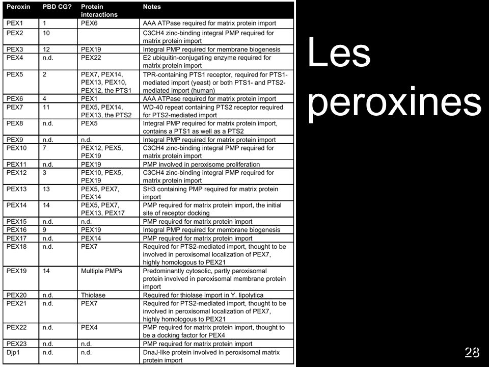 28 Les peroxines http://www.peroxisome.org/Scient ist/Biogenesis/peroxins/membran ebio.html