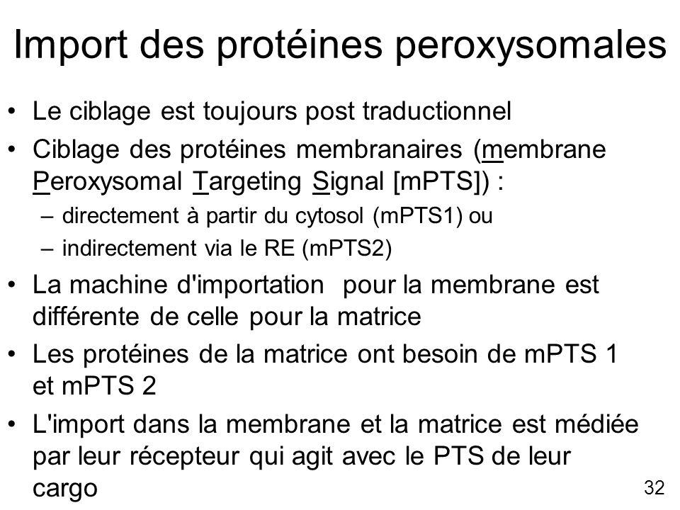 32 Import des protéines peroxysomales Le ciblage est toujours post traductionnel Ciblage des protéines membranaires (membrane Peroxysomal Targeting Si
