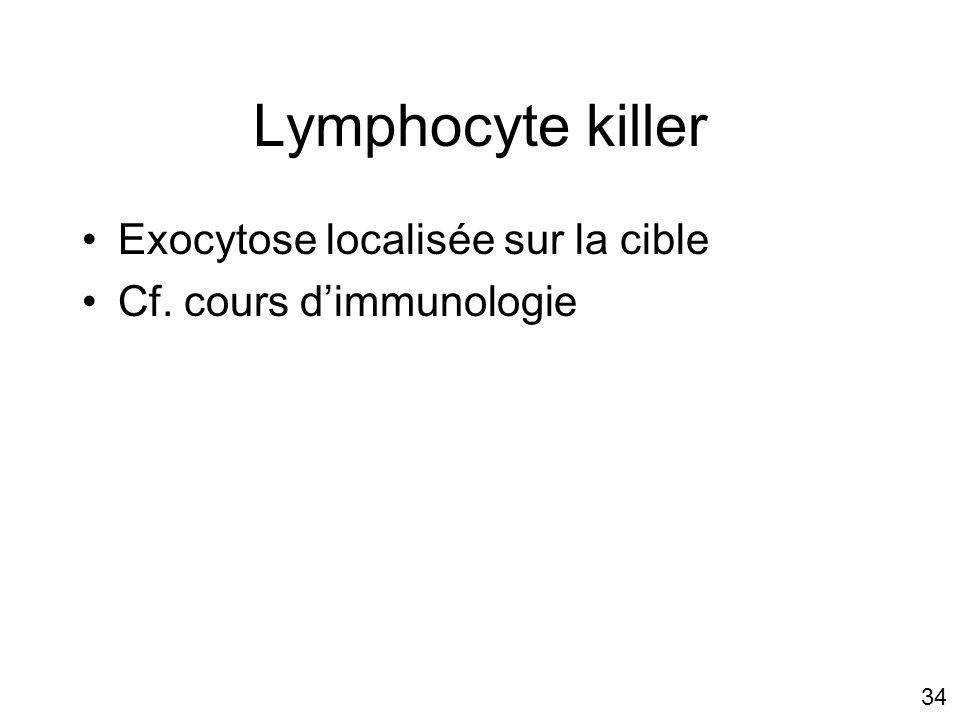 34 Lymphocyte killer Exocytose localisée sur la cible Cf. cours dimmunologie