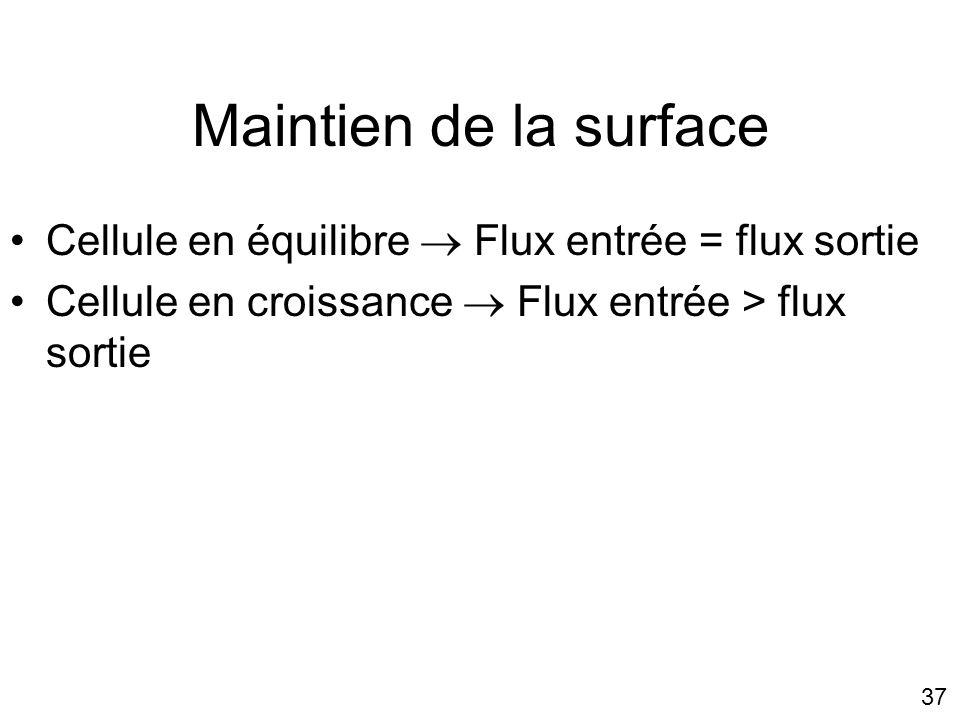 37 Maintien de la surface Cellule en équilibre Flux entrée = flux sortie Cellule en croissance Flux entrée > flux sortie