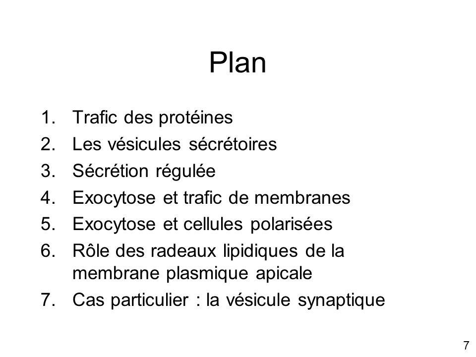 7 Plan 1.Trafic des protéines 2.Les vésicules sécrétoires 3.Sécrétion régulée 4.Exocytose et trafic de membranes 5.Exocytose et cellules polarisées 6.Rôle des radeaux lipidiques de la membrane plasmique apicale 7.Cas particulier : la vésicule synaptique