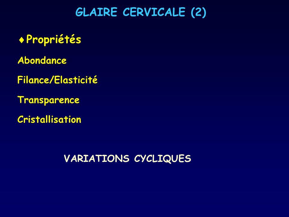 GLAIRE CERVICALE (2) Propriétés Abondance Filance/Elasticité Transparence Cristallisation VARIATIONS CYCLIQUES