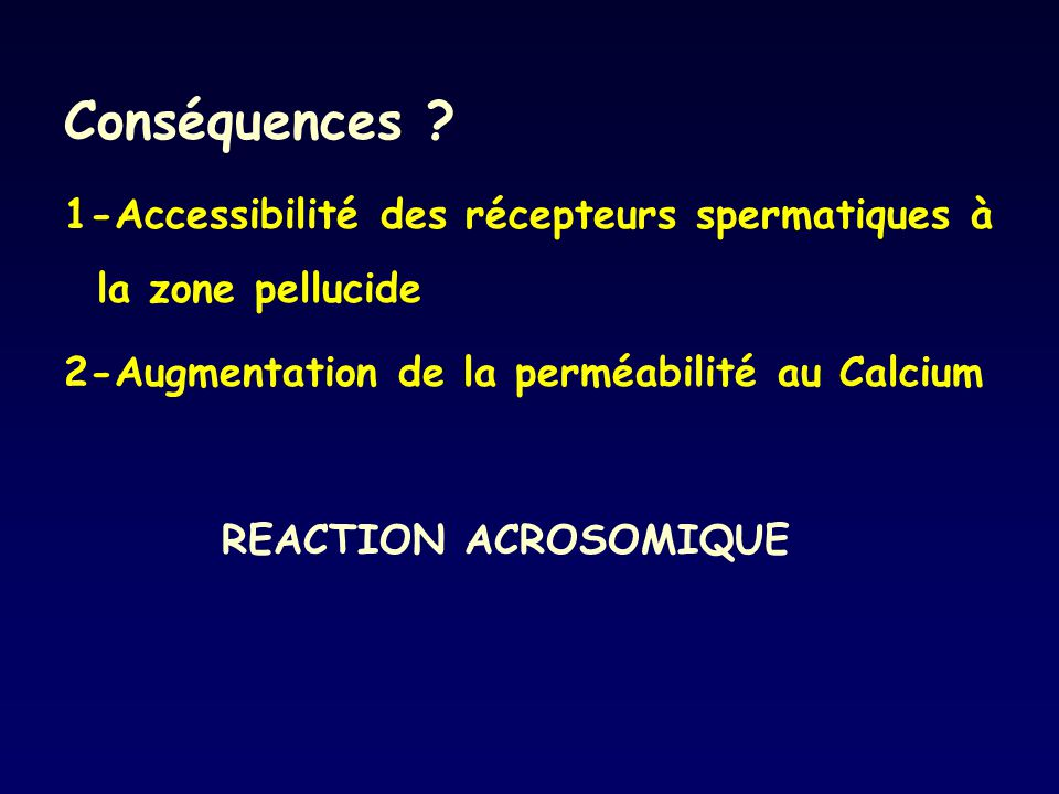 Conséquences ? 1-Accessibilité des récepteurs spermatiques à la zone pellucide 2-Augmentation de la perméabilité au Calcium REACTION ACROSOMIQUE