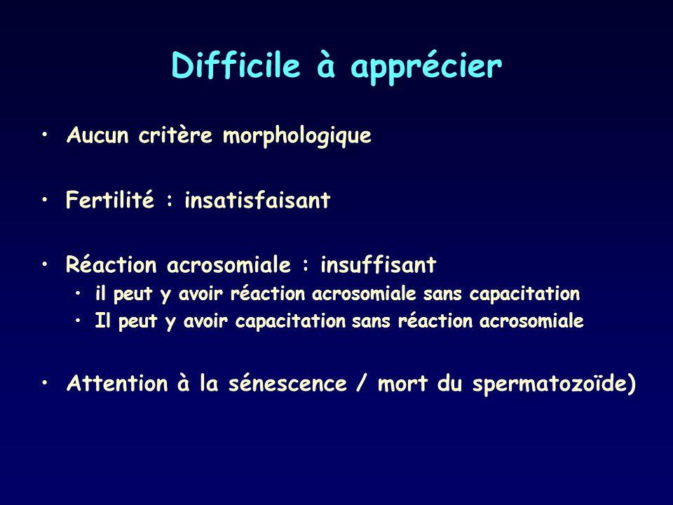 Difficile à apprécier Aucun critère morphologique Fertilité : insatisfaisant Réaction acrosomiale : insuffisant il peut y avoir réaction acrosomiale s