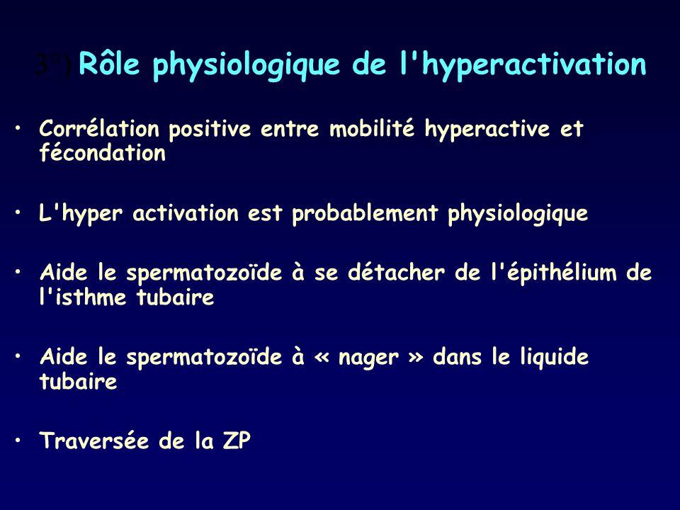 3°) Rôle physiologique de l'hyperactivation Corrélation positive entre mobilité hyperactive et fécondation L'hyper activation est probablement physiol