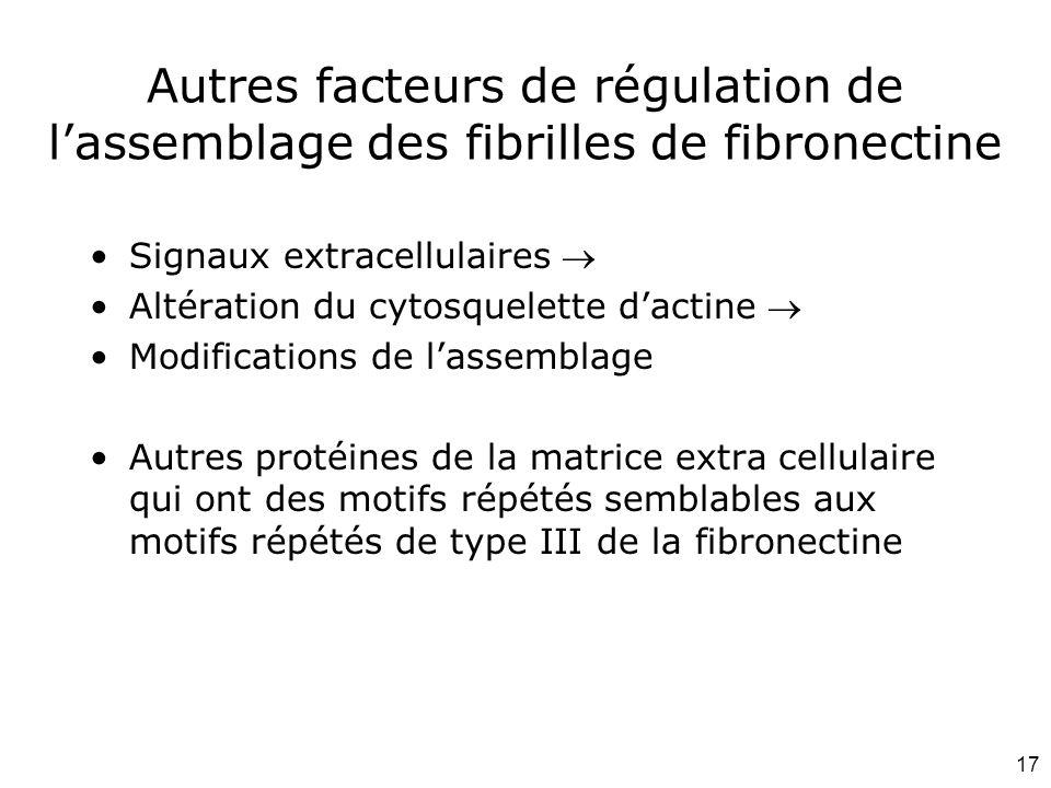 17 Autres facteurs de régulation de lassemblage des fibrilles de fibronectine Signaux extracellulaires Altération du cytosquelette dactine Modificatio