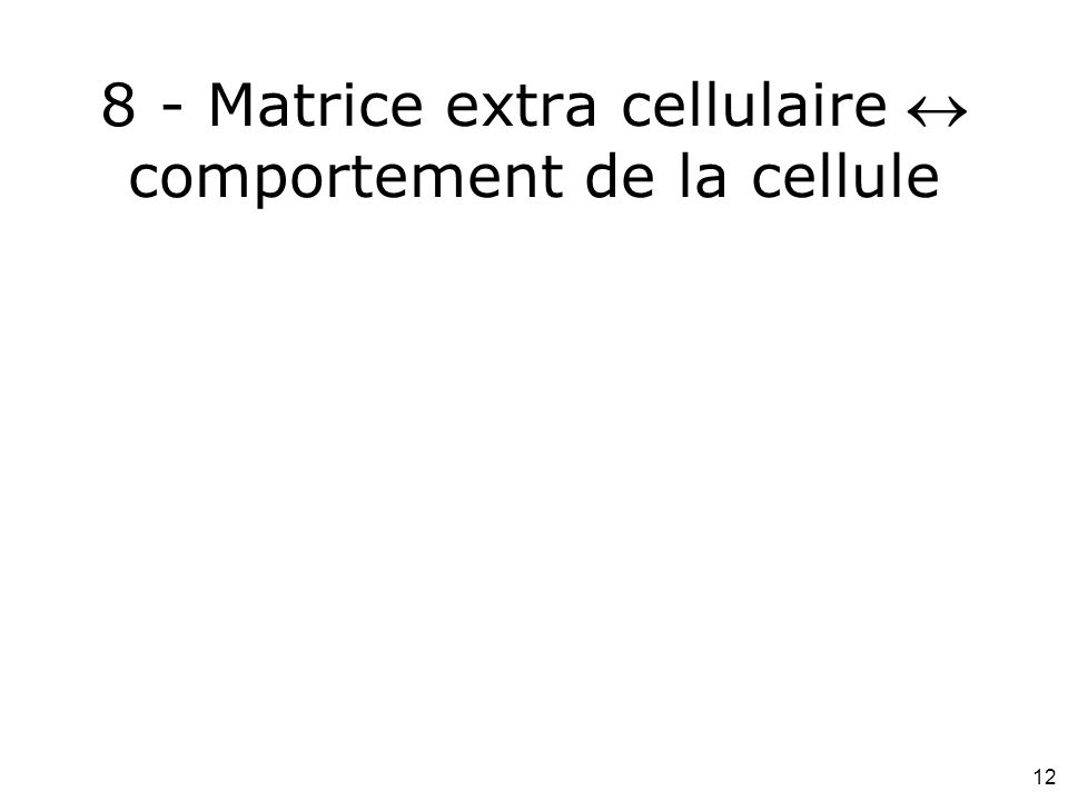 12 8 - Matrice extra cellulaire comportement de la cellule