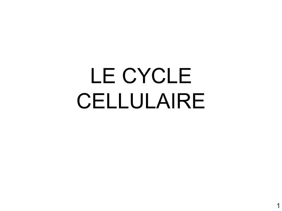 1 LE CYCLE CELLULAIRE