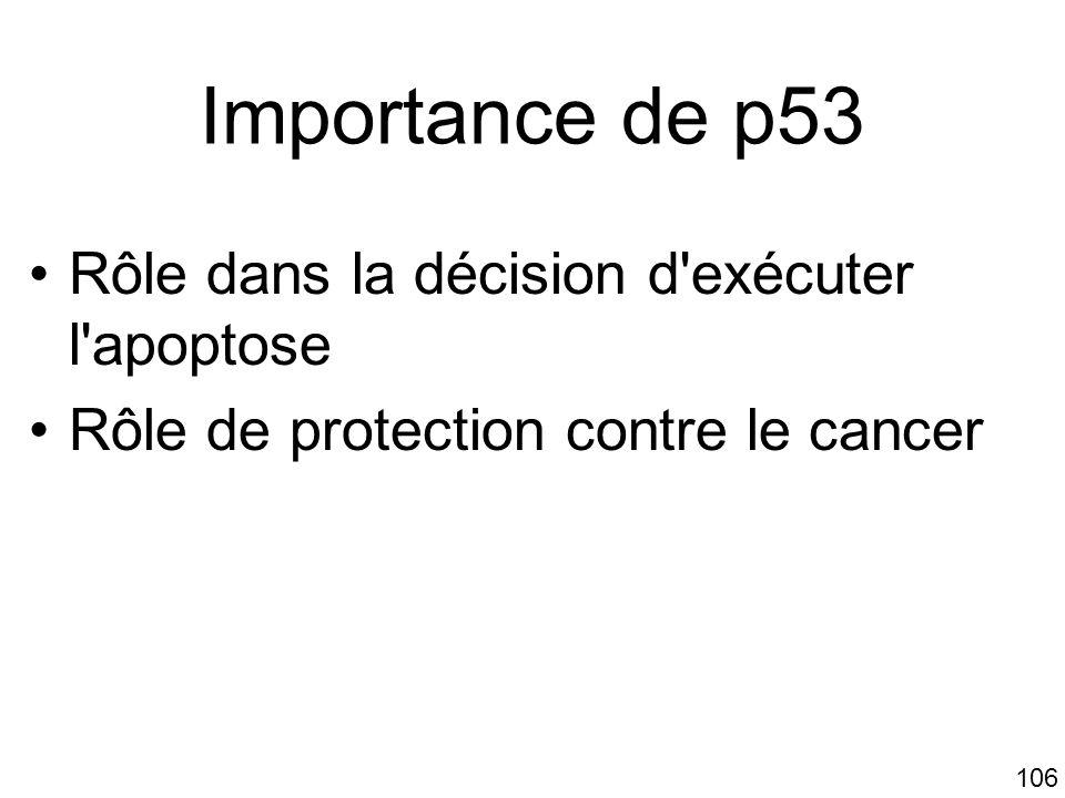 106 Importance de p53 Rôle dans la décision d'exécuter l'apoptose Rôle de protection contre le cancer