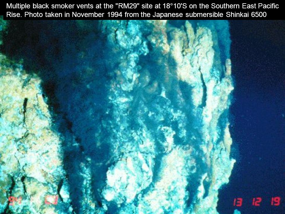 13 http://www.pmel.noaa.gov/v ents/chemistry/image.html Multiple black smoker vents at the
