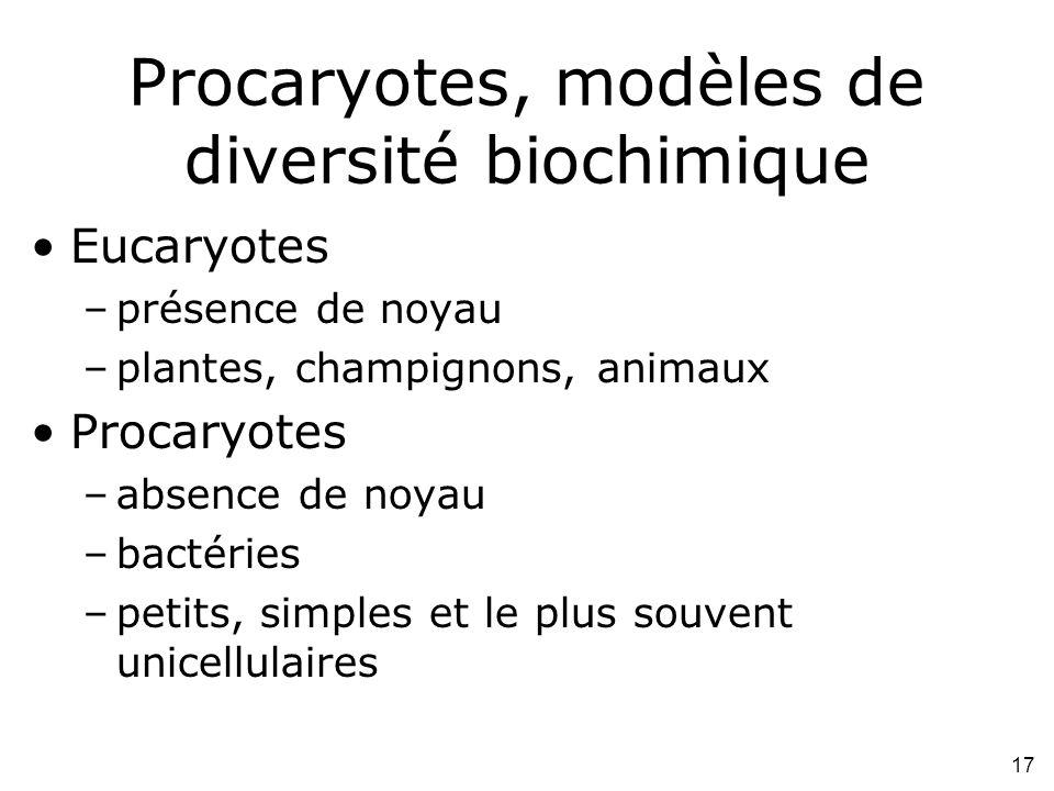 17 Procaryotes, modèles de diversité biochimique Eucaryotes –présence de noyau –plantes, champignons, animaux Procaryotes –absence de noyau –bactéries –petits, simples et le plus souvent unicellulaires