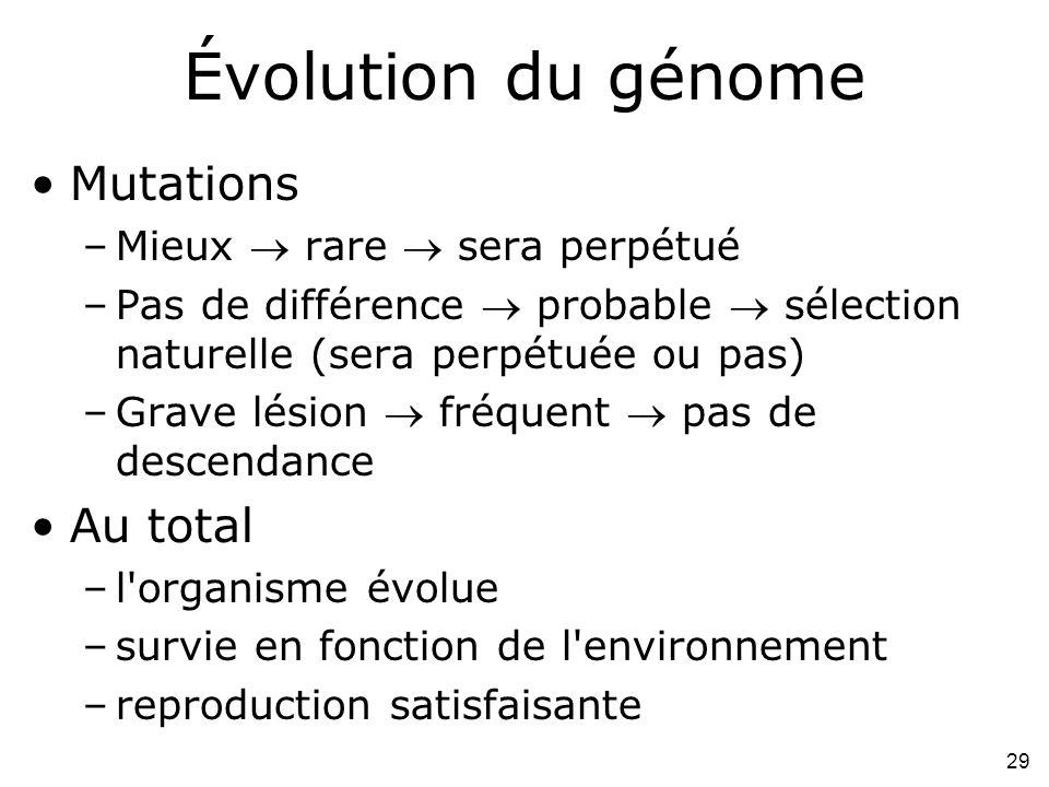 29 Évolution du génome Mutations –Mieux rare sera perpétué –Pas de différence probable sélection naturelle (sera perpétuée ou pas) –Grave lésion fréquent pas de descendance Au total –l organisme évolue –survie en fonction de l environnement –reproduction satisfaisante