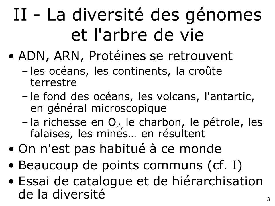 3 II - La diversité des génomes et l arbre de vie ADN, ARN, Protéines se retrouvent –les océans, les continents, la croûte terrestre –le fond des océans, les volcans, l antartic, en général microscopique –la richesse en O 2, le charbon, le pétrole, les falaises, les mines… en résultent On n est pas habitué à ce monde Beaucoup de points communs (cf.