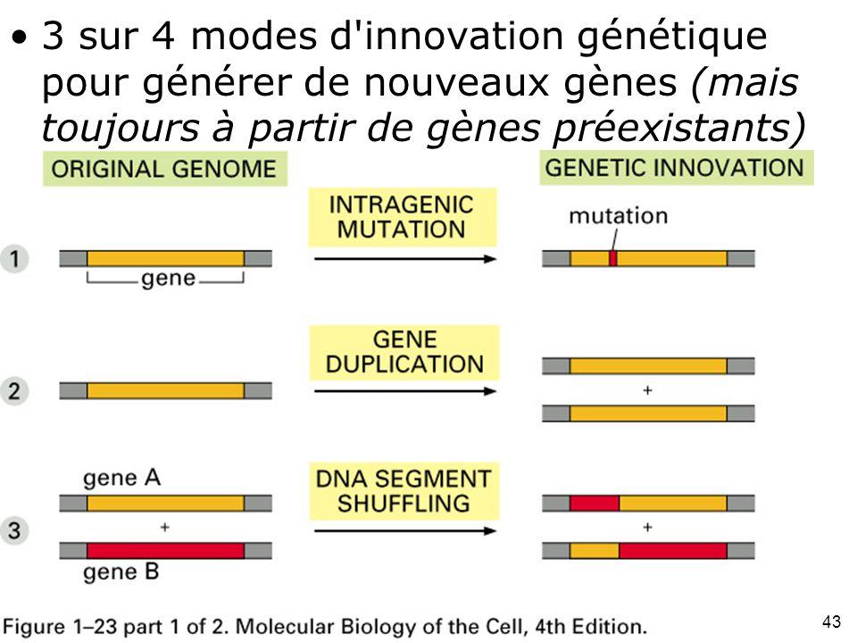 43 Fig 1-23(part1) 3 sur 4 modes d innovation génétique pour générer de nouveaux gènes (mais toujours à partir de gènes préexistants)