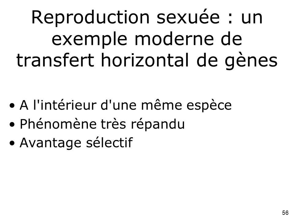 56 Reproduction sexuée : un exemple moderne de transfert horizontal de gènes A l intérieur d une même espèce Phénomène très répandu Avantage sélectif